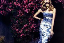 Cavalli is Everything / by Maria Hazell