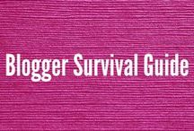 Bloggers Survival Guide / Increase page views, blog income report, blogging tips, blogging for beginners, blogging for money