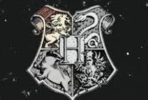 Harry Potter Forever / Draco Dormiens Nunquam Titillandus  / by Samantha Hopkins