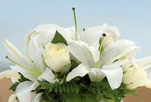 Flowers, Party & Wedding / by Susanna Cuervas