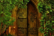 Delightful DOORS / by Ann