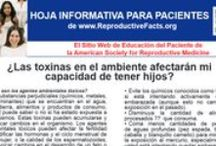 Spanish Language Patient Fact Sheets and Booklets