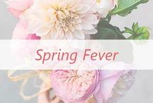 Spring Fever / As the weather warms up we're craving colorful spring fashion to chase those winter blues away.
