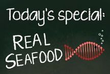 fish and seafood / fish and seafood recipes / by Deborah Holyfield