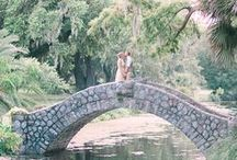 Love / Love, Brides, Weddings, Couples, Engagements, Photography