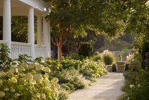 Backyard Loveliness
