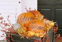 Autumnal Bliss / Fall-elujah! Halloween, Thanksgiving, and all things fall. / by Kitty S.