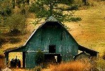 Barns / by Irene Corcoran