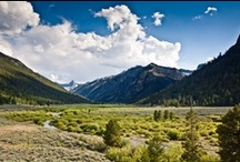 Idaho - Come Visit! / by Sturtevants of Sun Valley