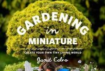 OUTDOOR : Gardening / How to make my garden grown. Planting ideas, tips tricks and other helpful information
