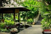 Bali Style Gardens / Bali style gardens offer beauty, peace and tranquility in a lush setting. / by Gado Gado Atlanta