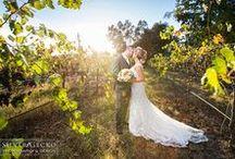 Creative Wedding Photography / Creative Wedding Photography by Adam N. Parth, Silver Gecko Photography & Design.
