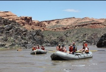 Westwater Canyon - Colorado River / Westwater Canyon Rafting.