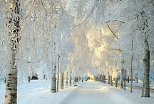 Fire and Ice / Scenes depicting the Magic that happens when Light shines through Snow and Ice.