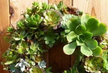 Wreaths...Plus / Beautiful, Creative ways to Decorate your Environment