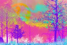 Electric Forest  / by Kaitlyn Sheets