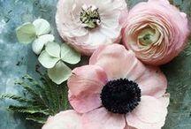 [fleur]