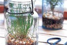 In a Jar: Crafts and DIY