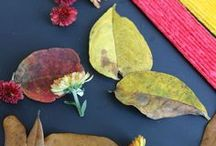 October / Halloween, pumpkins and leaves! October resources for kids, parents and teachers.
