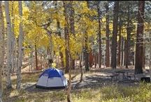 Camping & Outdoors Tips / Tips, tricks, and helpful knowledge for camping, hiking, and exploring the great outdoors!