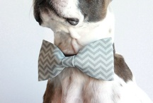 Chevron Wedding / Don't you just love those chevron stripes? Loads of inspiration for your wedding.