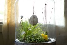 Home decor: You are my terrarium / Terrariums are amazing fun to make to decorate your home