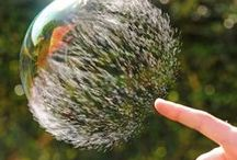 Photography - Timing / perfectly timed photos i adore / by CRYgraphics