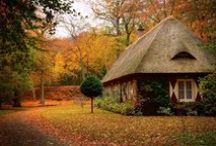My Dream Writing Cottage / If I could build a writing cottage...