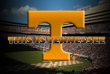 Tennessee Vols, Attractions, Cities  and Weather Events /  Knoxville, Nashville, Memphis and Chattanooga attractions.  Especially hubby's love of Vols Football!! Great Smoky Mtn. attractions and vacation spots.Also some weather events.