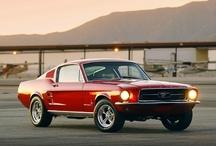 Mustangmania!!! / by Carol VanSickle Rockwell