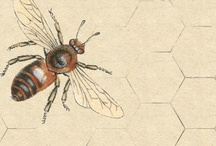 What's that buzz? / Buzz Buzz Buzz, what's that buzz?