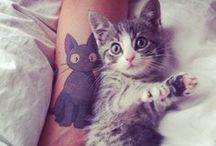 Cat Tattoos / Love tattoos!  Love cats!