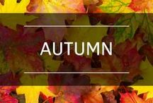 Autumn / Fall is for colored leaves, chunky sweaters and pumpkin everything!