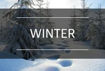 Winter / Winter. Warm. Sweaters. Snow. Fun