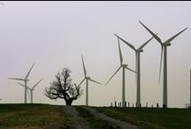 Renewable Energy / by EarthShare
