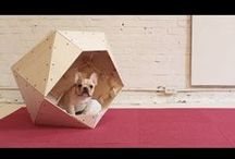Pets / DIY projects for pets and people who love to spoil their pets.