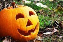 Halloween / by Rachel Plant