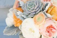 Flores / by Leah Sumner