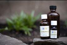 :: herbalist :: / by kathy