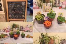Peter Rabbit + McGregor Garden Party / Peter Rabbit + McGregor Garden Party