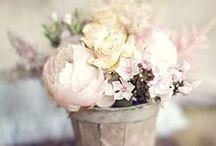 Flowers / by Diana Centea
