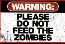 Zombie Apocolypse Preparedness / by rivkasmom