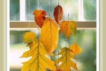 Autumn / Halloween Thanksgiving Fall Fun / by Sarah Jackson