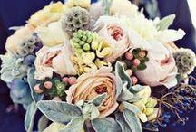 Weddings / by Amy Gregory