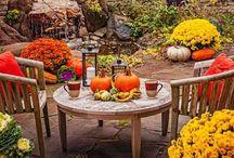 Autumn. / decor & ideas / by Shae