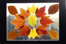 Class Fall Ideas / by Jolynne Rogers