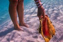 Beach Coma / The beaches of the Algarve