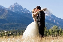 Colorado Cool Love / by Emerald Events & Weddings
