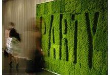 ECS Green Carpet Launch party