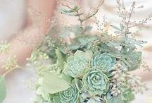 Eco-chic Mint Wedding / by Melissa @EmeraldEventsIntl.com